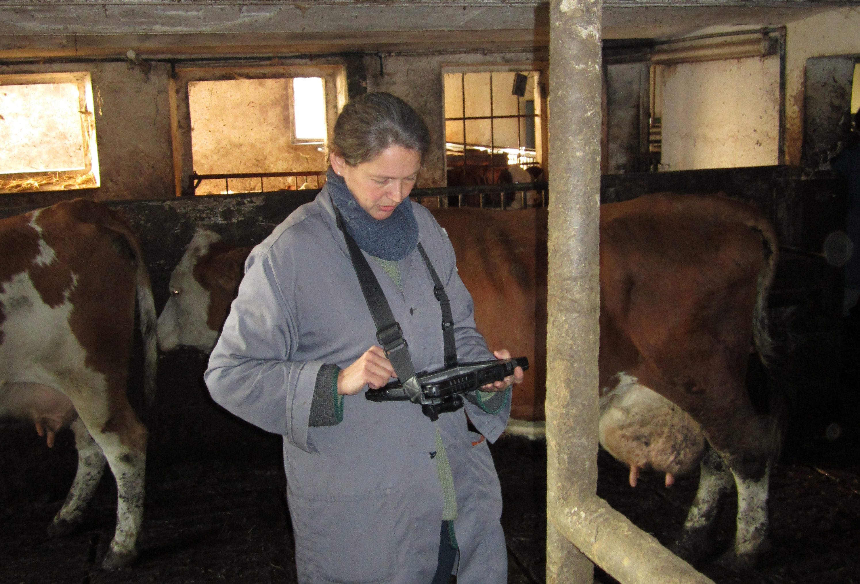 iPad controle veterinaire élevage